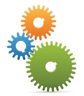 Basic Website Design & Development